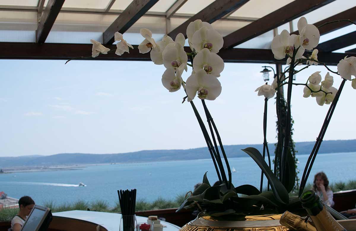 Ausflug-nach-Koper-und-Besuch-des-Hotel-Bernardin-orchidee