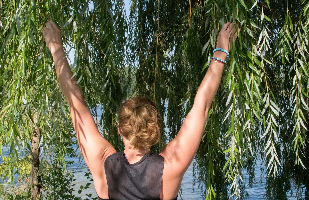 Wachau-Marathon-im-Team-Salomon-rückenansicht