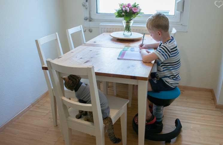 Aktiv-Kinder-Drehstuhl-swoppster-gerader-rücken-bei-schularbeiten
