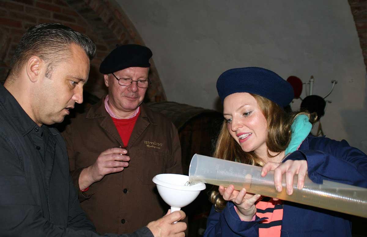 Ausflüge-nach-Keszthely-ins-Schlossmuseum-und-Badacsony-wein-abfüllen