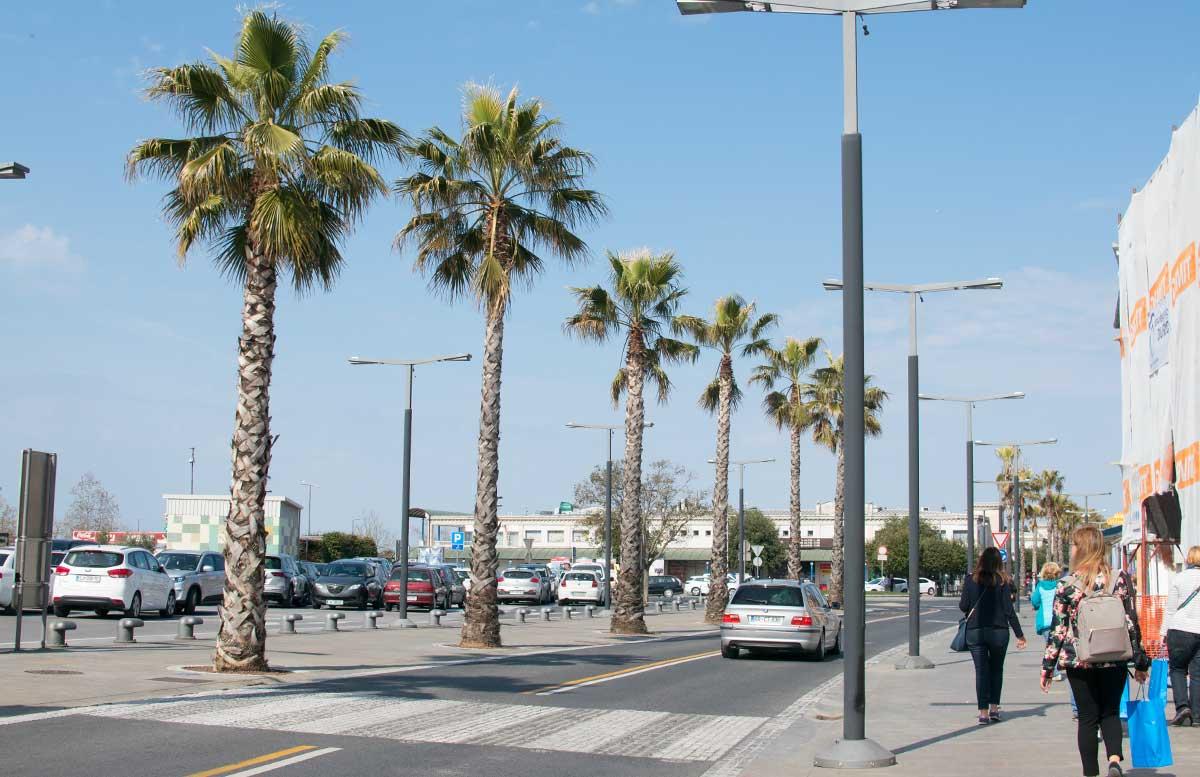 Ausflug nach Koper und Besuch des Hotel Bernardin palmen weg zum markt
