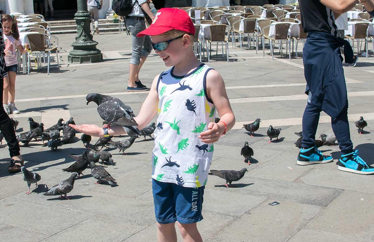 Ausflug nach Venedig und Cavallino tauben am Markusplatz