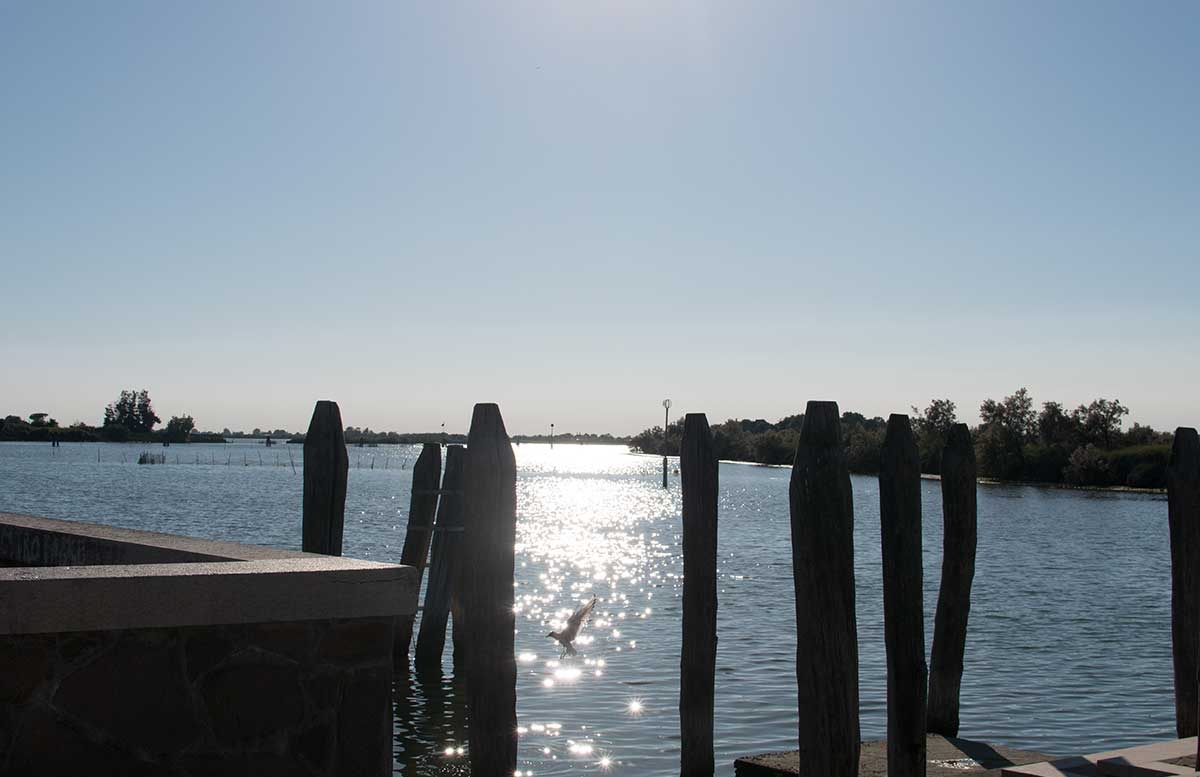 Ausflug nach Venedig und Cavallino radtour lagune blick aufs meer