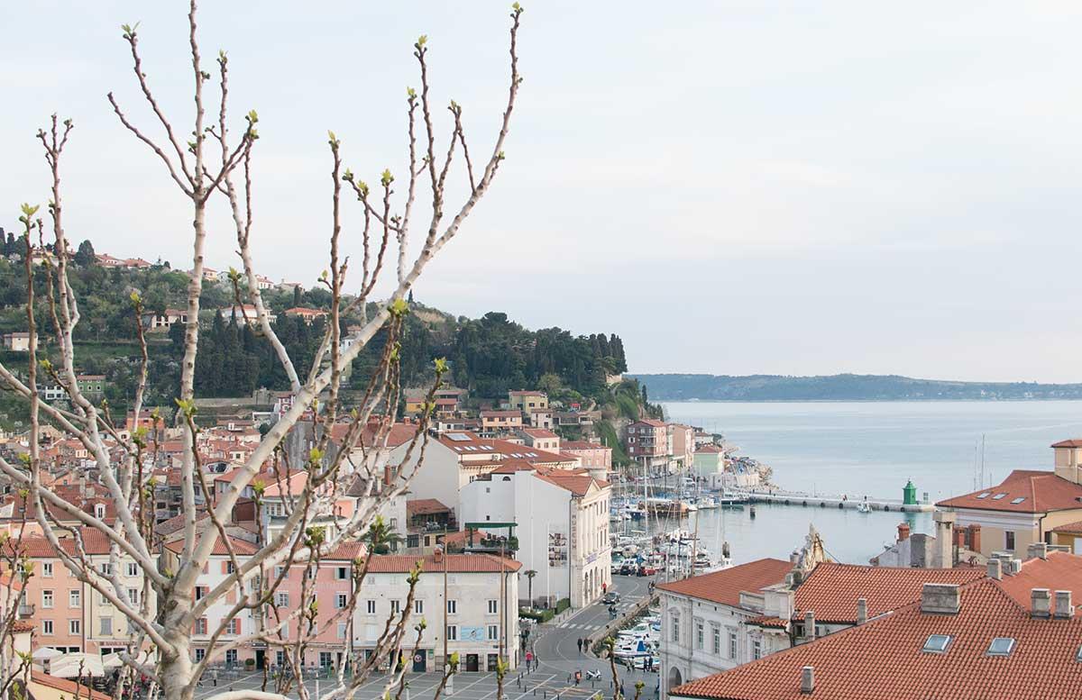 Ausflug zum Meer Portoro   und die Altstadt in Piran blick auf die d  cher