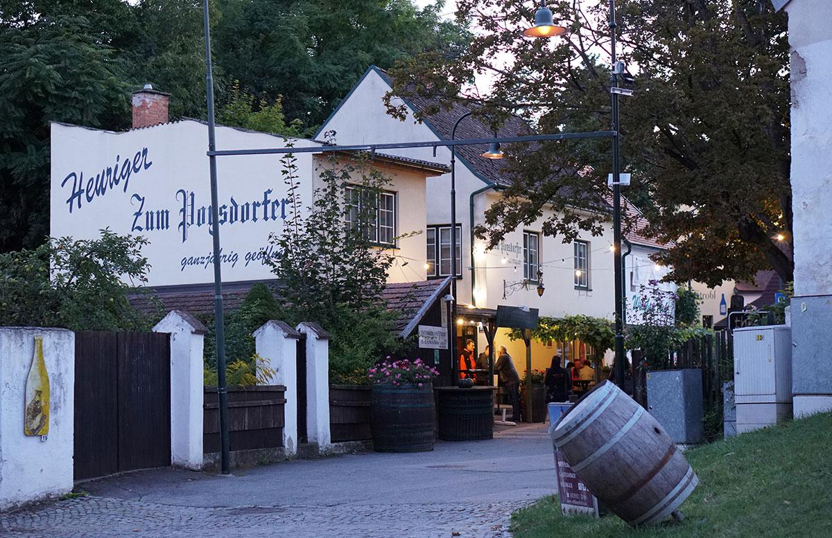 Ausflug-zur-Burg-Falkenstein-und-E-Bike-Tour-in-Poysdorf-heuriger-zum-poysdorfer