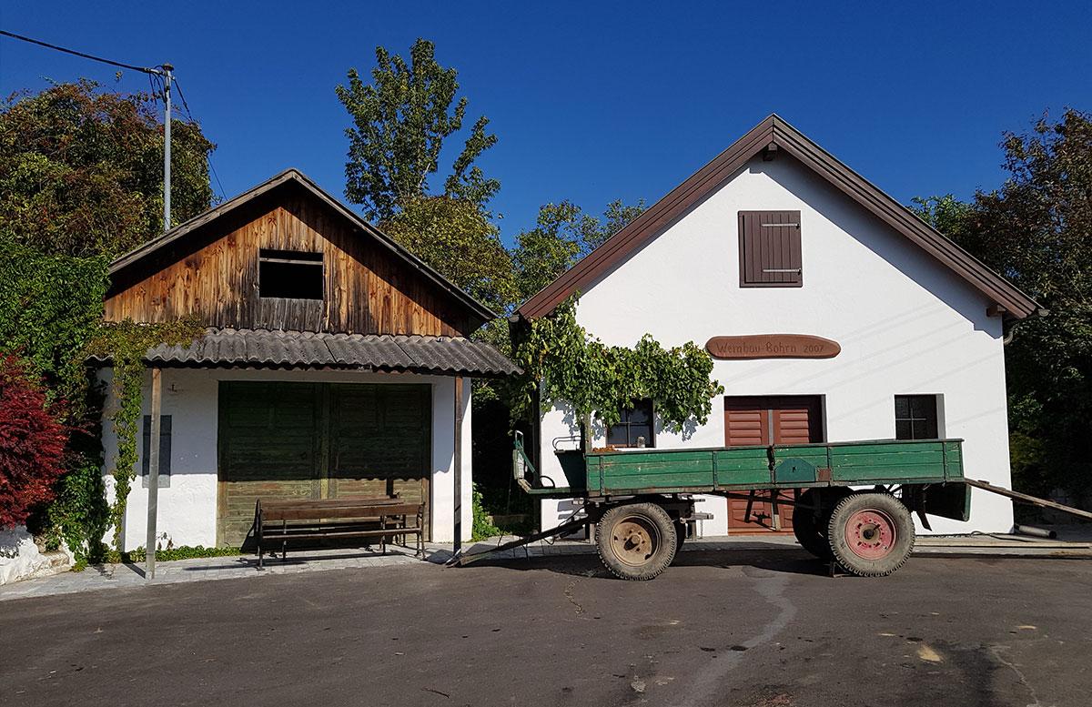 Ausflug-zur-Burg-Falkenstein-und-E-Bike-Tour-in-Poysdorf-kellergasse