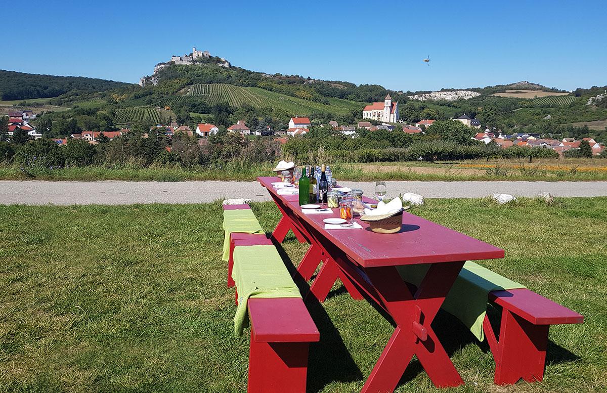 Ausflug-zur-Burg-Falkenstein-und-E-Bike-Tour-in-Poysdorf-picknick-mit-ausblick