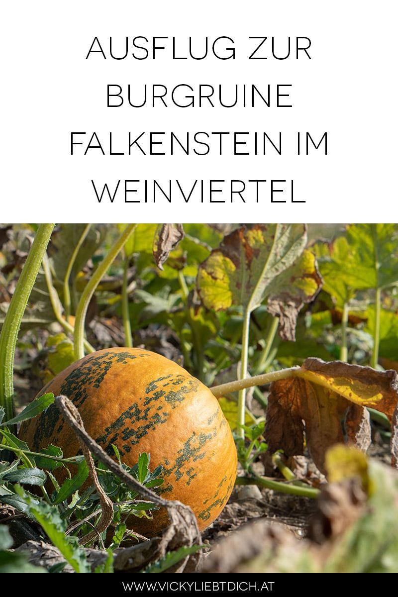 Ausflug-zur-Burg-Falkenstein-und-E-Bike-Tour-in-Poysdorf-pinterest