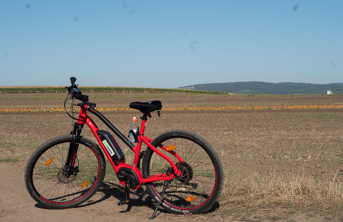 Ausflug-zur-Burg-Falkenstein-und-E-Bike-Tour-in-Poysdorf-räder