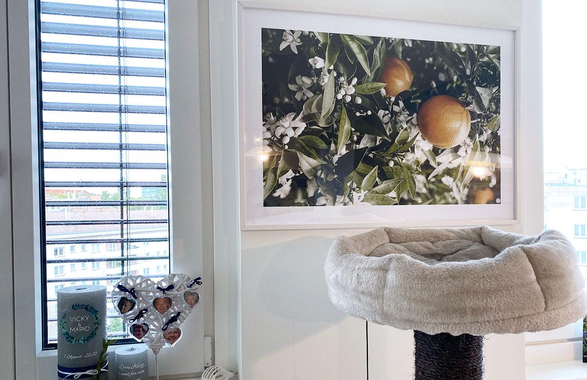 Bilderwand-Inspirationen-für-die-Wohnung-mit-Posterstore-orangenbild-kühl