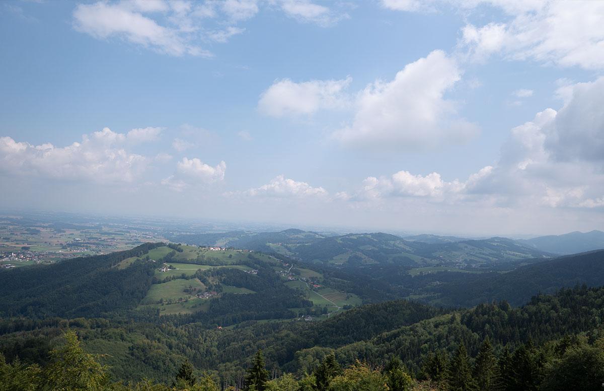 Der Baumwipfelpfad am Grünberg in Gmunden blick nach unten berge