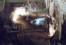 Die-Höhle-von-Postojna-höhlenwanderung-titelbild