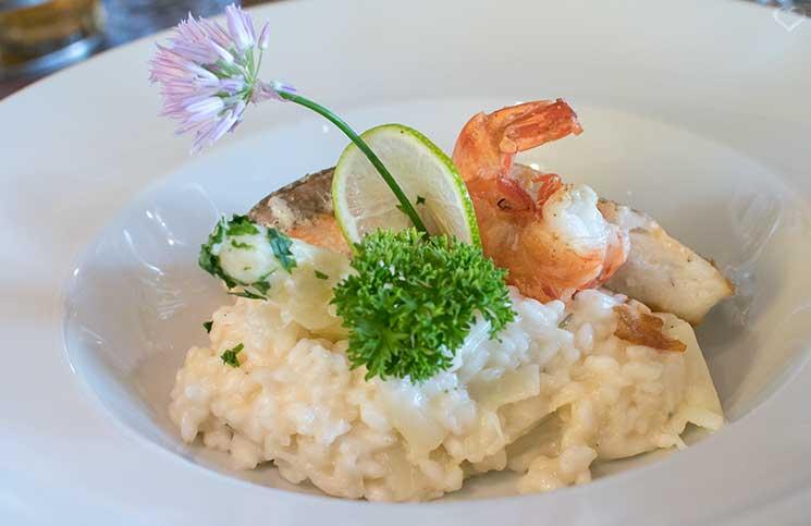 Die Therme Bükfürdo und Restaurant Tipps für Bük restaurant-aurora-fisch-risotto