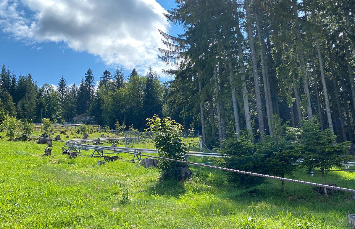 Erlebnisarena-in-St.-Corona-Sommerrodeln-Motorikpark-und-Biken-RODELSTRECKE