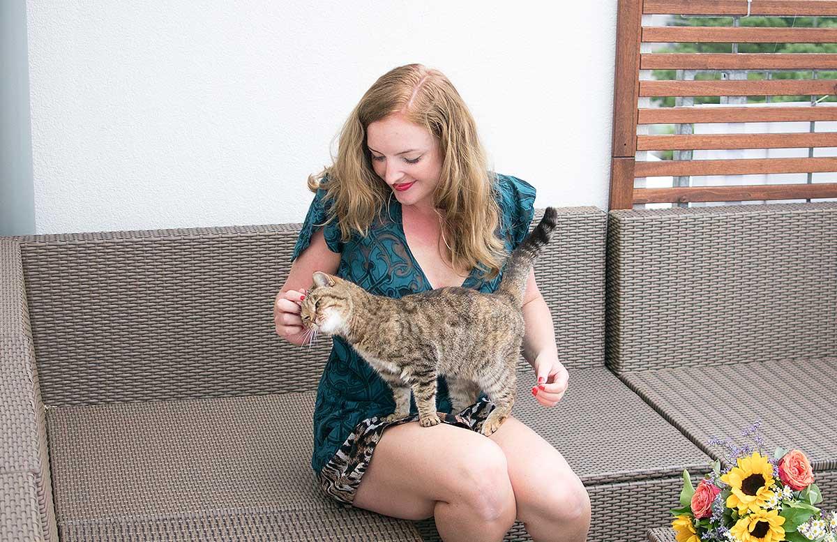 10 Gründe warum ein Leben mit Katze wunderschön ist