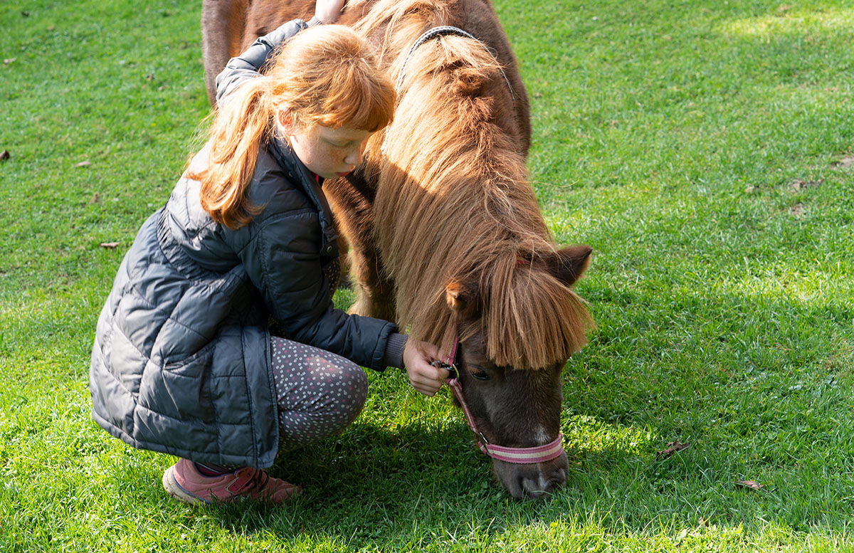 Glamping im Charming Slovenia in Ljubno tochter julia mit ponny
