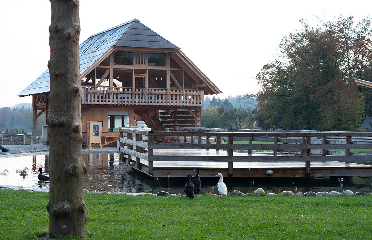 Glamping im Slovenia Eco Resort Kamnik hütten gänse