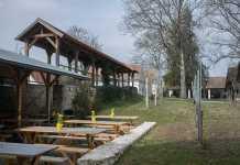 Kellergassenführung-im-Weinviertel-vino-versum-ausstellung