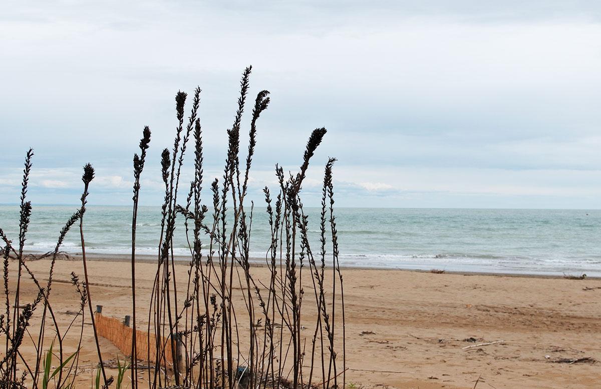 Lino-delle-fate-Eco-village-Resort-in-Bibione-strandspaziergang-eco-strand