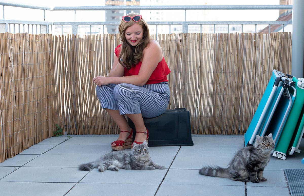 Luna und Peppa - unsere Sibirische Waldkatzen outfit paperbag hose kätzchen
