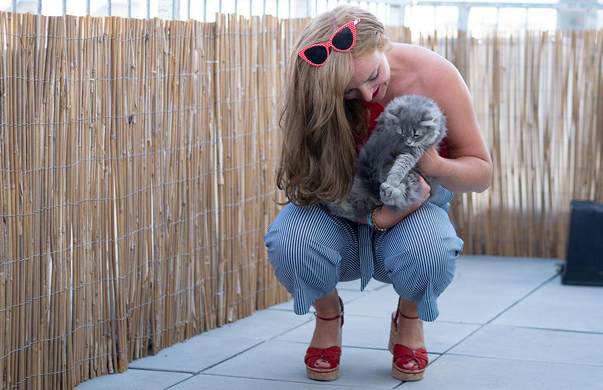 Luna und Peppa unsere Sibirische Waldkatzen paperbag hose