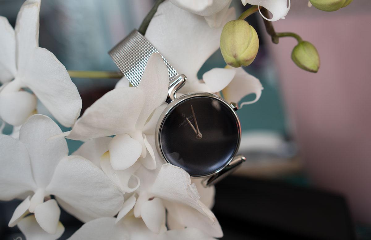 Nordgreen-Unika-Rainbow-Black-orchidee-hängend