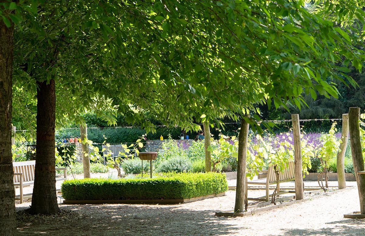 Parks-und-Gärten-in-Niederösterreich-und-Südmähren-stuhl-im-garten-kräutergarten-lu-und-tiree-chmelar