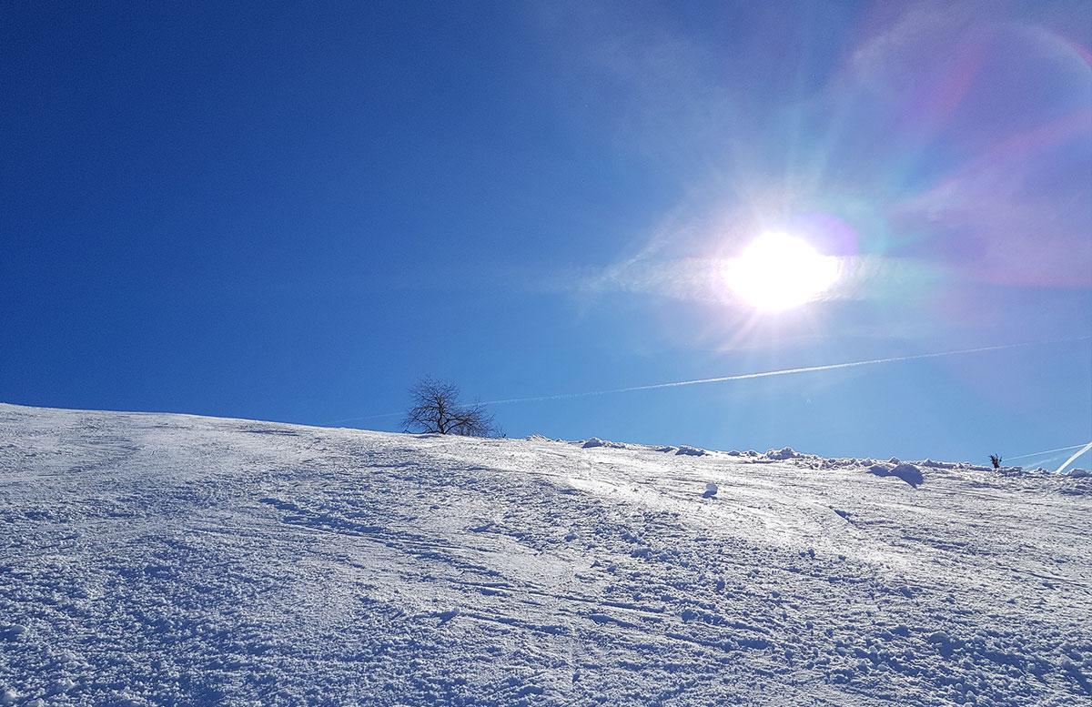 Skiregion-Dachstein-West-in-Gosau-skipiste-blick-nach-oben