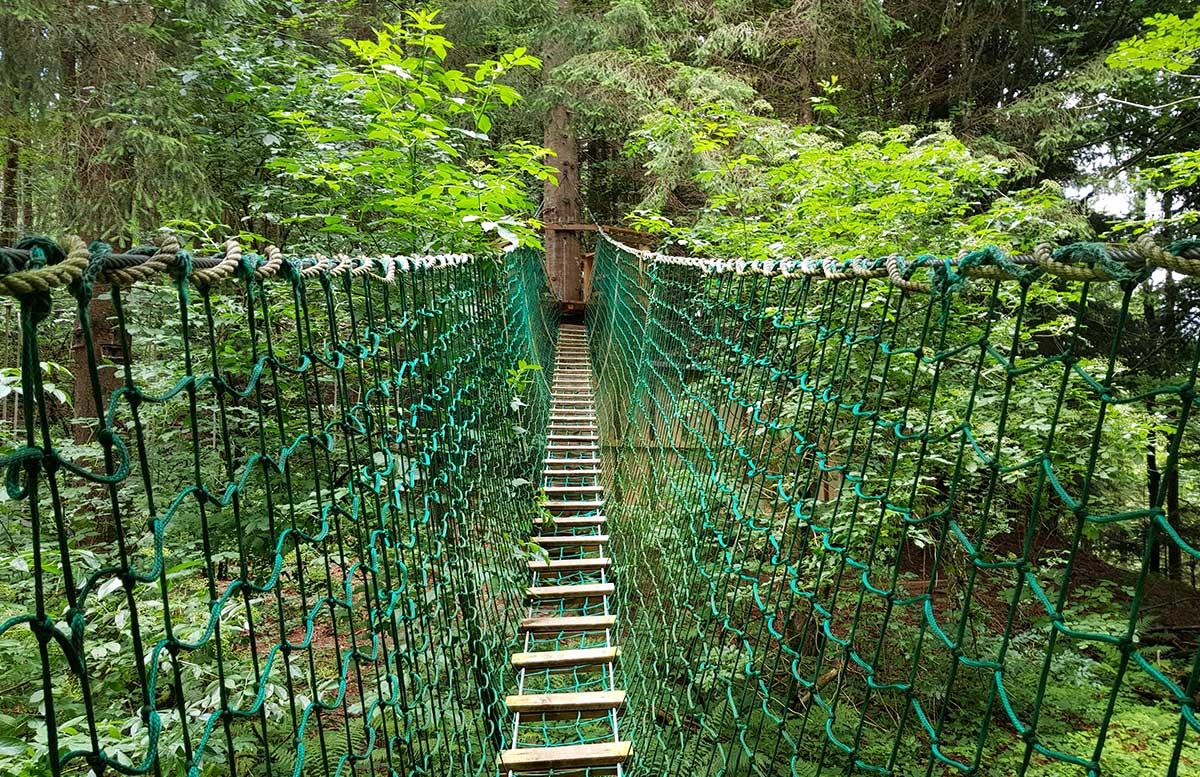 Sommerrodeln in Fuschl und der Waldkletterweg in Faistenau klettern kletterweg hängebrücke