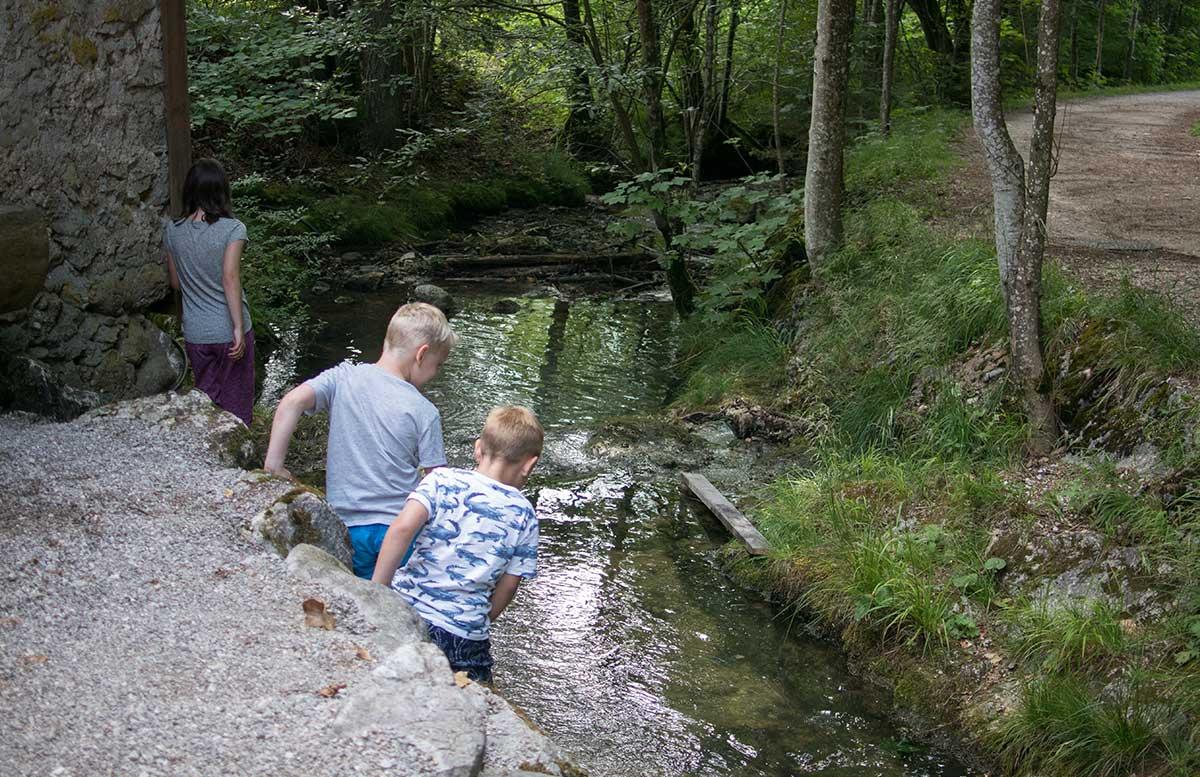 Sommerrodeln-in-Fuschl-und-der-Waldkletterweg-in-Faistenau-rumingmühle-bach spielen