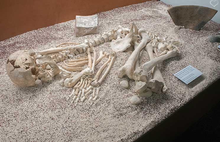 Stonehenge-Ausstellung-grabstätte-mamuz