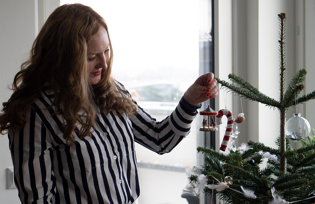 Weihnachtsgrüße und ein Rückblick auf 2018 karussell