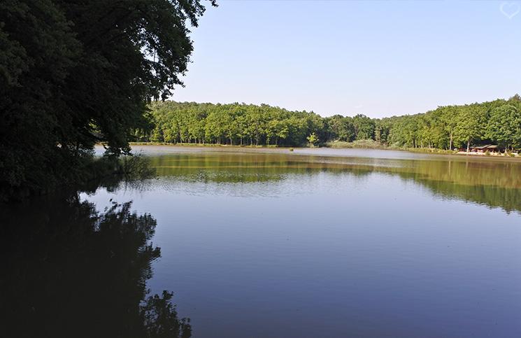 bukovnisko-lake