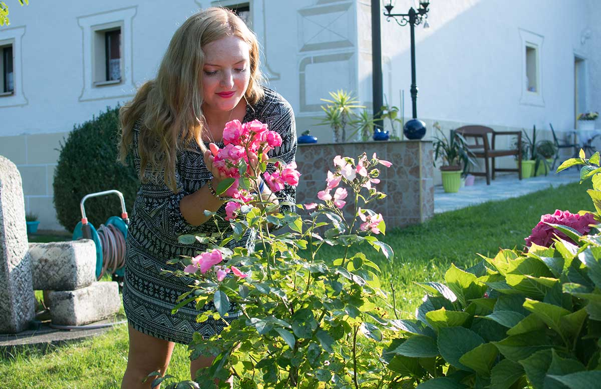 Hallo Herbst - Gedanken zum Leben als Blogger an rosen riechen