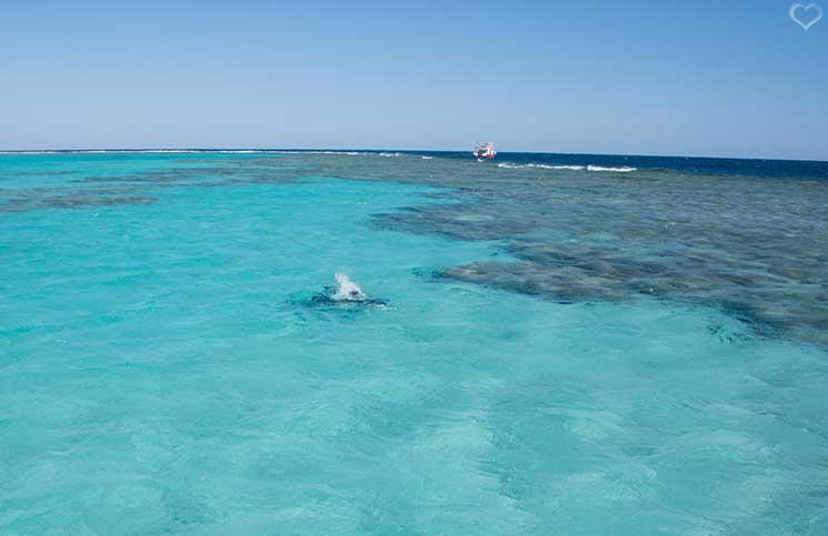 korallenriffe-Kitesurfen-in-Ägypten