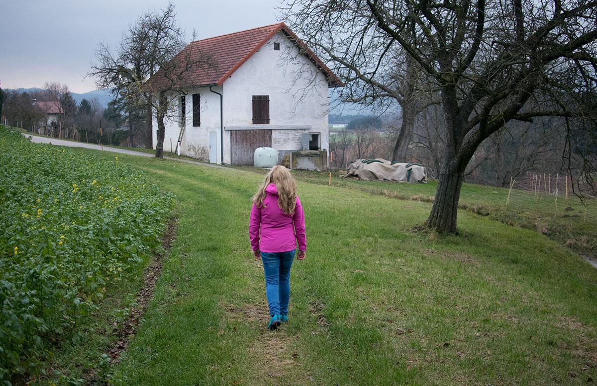 wandern-am-grünberg-in-gmundenweg-entlang-gehen