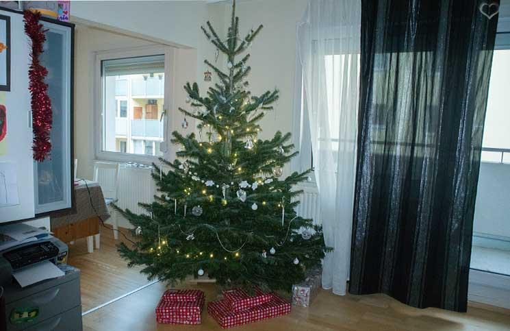 weihnachtsbaum-mit-lichterkette-unser-weihnachten