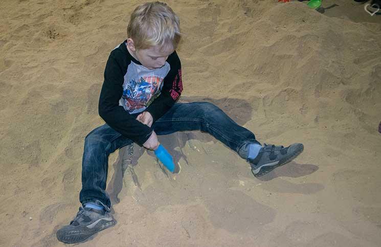 world-of-dinosaurs-ausgrabungen